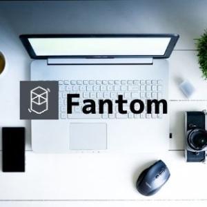 仮想通貨Fantomとは?基本情報・将来性・価格推移まとめ