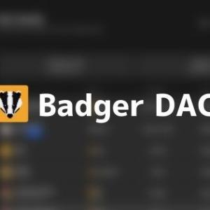 仮想通貨Badger DAOとは?基本情報・将来性・価格推移まとめ