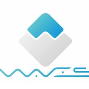 ウェイブス(waves/WAVES)を購入。取引所選びから、買い方、特徴まで解説