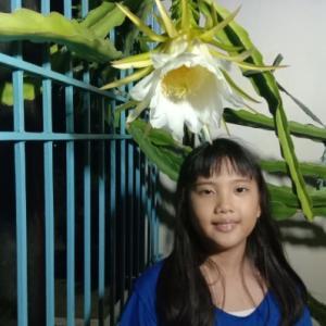 ドラゴンフルーツ、無事開花