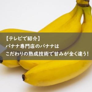 【テレビで紹介】バナナ専門店のバナナは甘みが全く違う! 全国のバナナ専門店をご紹介