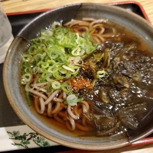 【麺紀行】久々の南海そばで「こぶそば」を食べてみた!