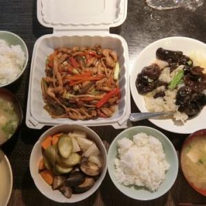 重慶小炒、涼拌双耳の晩御飯