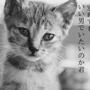 【短歌】優し過ぎる言葉