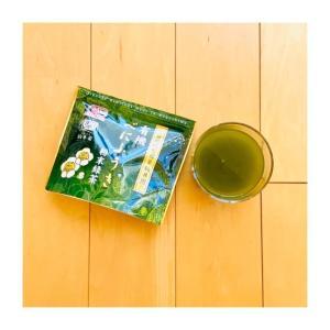 花粉にお茶がいい?べにふうき茶を飲んでみた感想【一定の効果あり】