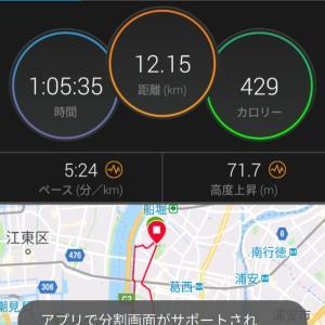 葛西臨海公園ナイトハーフマラソン応援☆