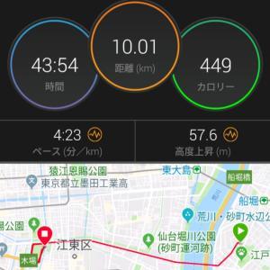 明日は春日部大凧マラソンハーフ☆