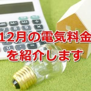 【一条工務店】床暖房を24時間稼働!12月の光熱費を公開します