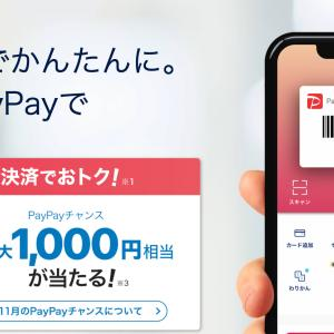 PayPay支払いスタート!!