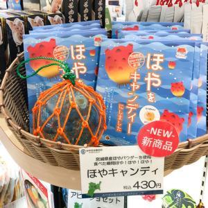へぇ~「ほやをキャンディにしました」って商品が新発売かぁ…っ、え、ほや、ほやぁああ!!!??