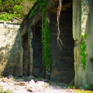 広島県大久野島のウサギと風景の著作権フリー写真素材その11です。