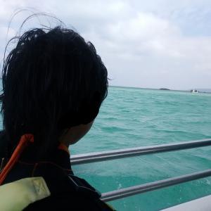 石垣島に出かけようPART6!サンゴ礁の海をのぞいてみよう