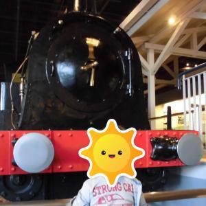 息子4歳の時の東京旅行コース(鉄道博物館。八景島シーパラダイス。国立科学博物館)