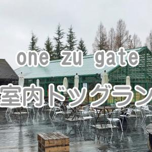 【ワンちゃんとお出かけスポット】one zu gate[ワンズゲート] 室内ドッグラン