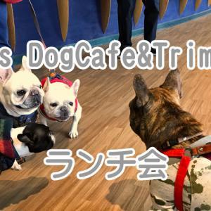 【フレンチブルドッグ イベント】Jacks DogCafe&Trimming(ジャックス)でランチ会