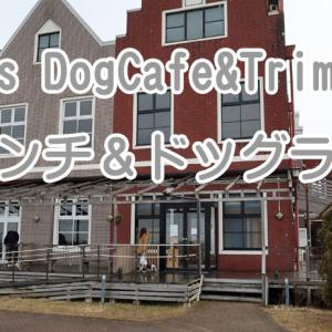【ワンちゃんも入れるお店】 Jacks DogCafe&Trimming (ジャックス)でランチ&ドッグラン