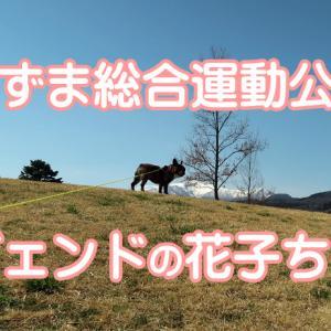 【ワンちゃんとお出かけスポット】あづま総合運動公園 レジェンド花子ちゃん登場!