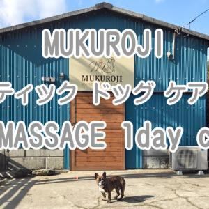 【ワンちゃんとお出かけスポット】MUKUROJI ホリスティック ドッグ ケア サロン DOG MASSAGE 1 day class