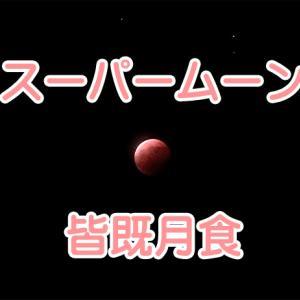 【フレブルの何気ない日常】スーパームーン × 皆既月食