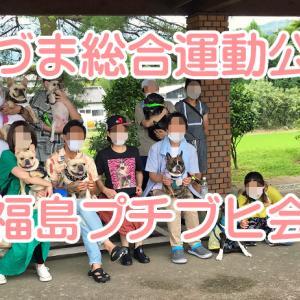 【フレンチブルドッグ イベント】 あづま総合運動公園 福島ブヒ会プレゼンツ プチブヒ会