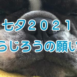 【フレブルの何気ない日常】 七夕 2021 とらじろうの願い事