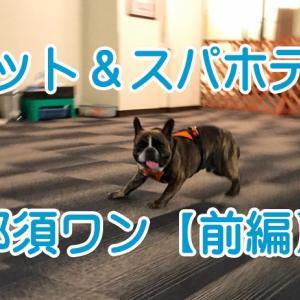 【ワンちゃんと泊まれるお宿】 ペット&スパホテル 那須ワン 【前編】