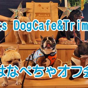 【フレンチブルドッグ イベント】 Jacks DogCafe&Trimming (ジャックス) はなぺちゃオフ会キャラバン