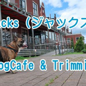 【ワンちゃんも入れるお店】Jacks DogCafe&Trimming (ジャックス)