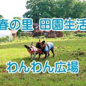 【ワンちゃんとお出かけスポット】三春の里 田園生活館 ドッグラン わんわん広場