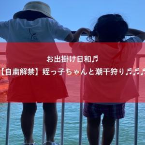 【広島県】みんなで潮干狩り♫海堀道具の紹介からあさりの効果と調理法まで