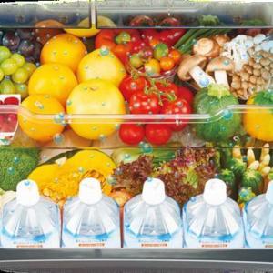 【購入レビュー】おすすめ冷蔵庫を比較検討|東芝ベジータVSシャープメガフリーザ