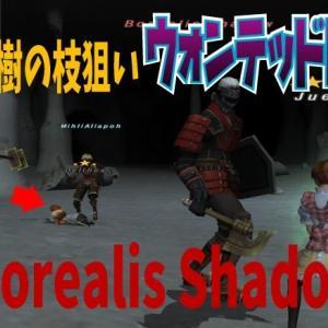 【ウォンテッド128】反魂樹の枝【Borealis Shadow】