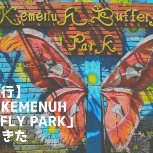 【バリ旅行】バトゥアン寺院や、トゥグナンガンの滝からすぐ近く! 蝶々園「Kemenuh Butterfly Park」に行ってきた