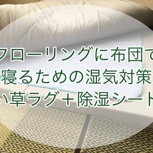 フローリングだけど布団で寝たい!そんなときの湿気対策には、ニトリのい草上敷き「ジオ」と除湿シートのダブル使いがオススメ!