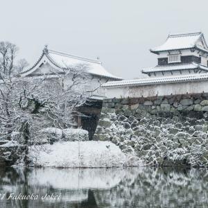 超福岡 寒くて暑いリアルな福岡の気候