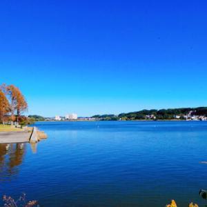 佐鳴湖富士・・・今日見れました!