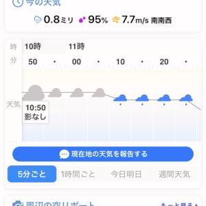 weaternews「5分天気予報」とMr.佐鳴湖&「ドラマティック・レイン/稲垣潤一」