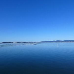 浜名湖も本日ツル面でした!/MISIA-アイノカタチ