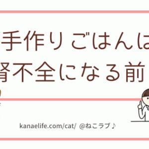【必見!】猫が腎不全になる前に手作りごはんにした方がいい理由