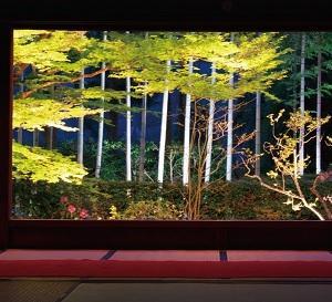 夜の観光におすすめ!今年も開催される春の夜灯り2019【京都イベント】