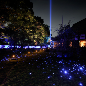 想像を絶する光景が広がる!夜の観光におすすめの青蓮院門跡【京都イベント】