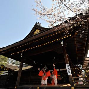 海外から人気No.1の神社!一年に一回しか見られない稲荷祭【京都イベント】