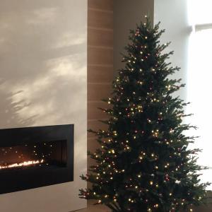 ちょっと早いけどクリスマスツリーを購入