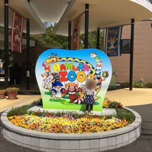 東京で極力お金かからない子供の遊び場!羽村市動物公園の感想