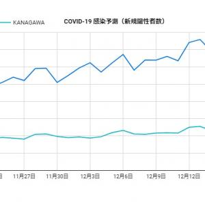 Google 一般公開データからの新型コロナCOVID-19感染予測(新規陽性者数・県別・日毎)