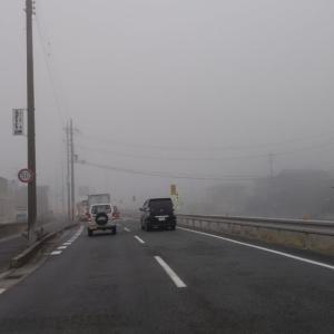霧の日に見る、車のライトやウインカーは人に自分の存在や行動を伝えるものだと知っている?