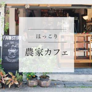 静かに時間が流れるごはん&コーヒーが美味しいカフェ|farm story house