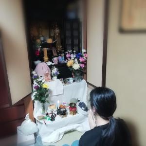 YouTube読経と「やさぐれ感」満載の地域猫  ~ お祖母ちゃんの初盆(後)