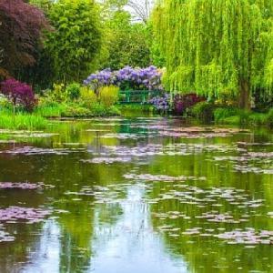 「横川」でお札を頂く前に「モネの睡蓮の池」に寄る ~ お祖母ちゃんの命日に比叡山延暦寺を訪れる ②
