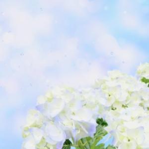 悔しくて泣いても「確かな成長」を確認した梅雨の日